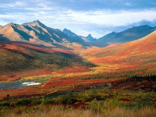 обои Природная красота, Канада фото