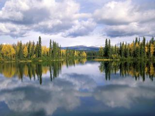обои Лесное озеро, Канада фото