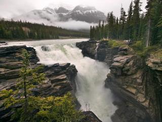 обои Водопад в лесу, Канада фото