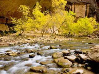 обои Юта, Национальный парк Зион фото