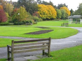 обои для рабочего стола: Одинокая скамеечка в пустом парке