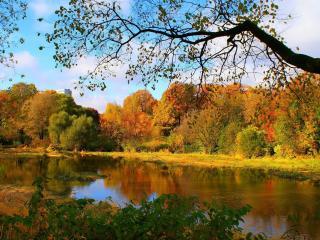 обои Золотая осень на реке фото
