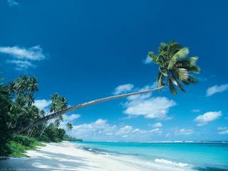 обои Пляж Корона фото