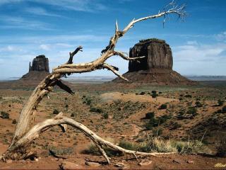 обои Безжизненная красота пустыни фото