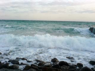 обои Бушующее море фото