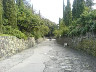 обои Каменная дорога в воронцовском парке фото
