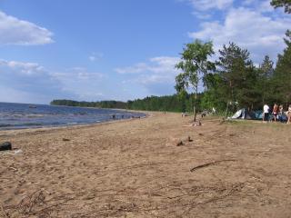 обои Пляж, Сосновый Бор фото