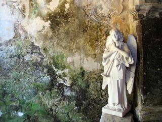 обои Белая статуя ангела фото