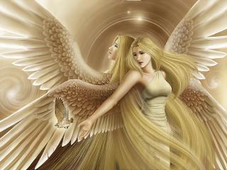 обои Два светлых ангела и птица фото