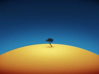 обои дерево в пустыне фото