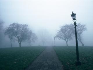 обои Парк. Туман. Фонарь фото