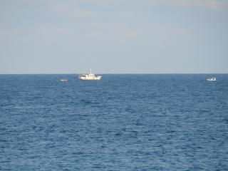 обои Черное море фото