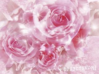 обои Розовые розы,С праздником фото