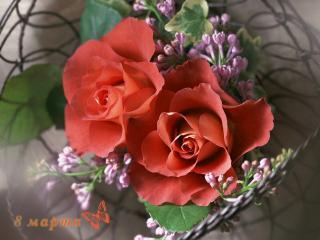обои Розы и серень,поздравляю фото