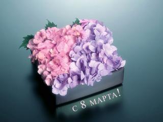 обои Коробка с цветами 2 видов,и 8 марта фото