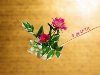 обои Как будто на ложке поднесли,цветочки в подарок фото