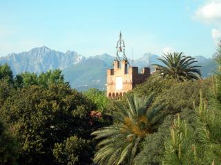 обои Колокольня на возвышенности среди густых деревьев Тосканы фото