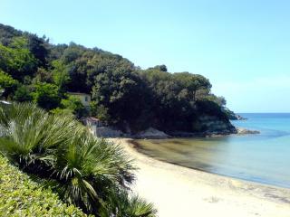 обои Дикий пляж Тоскканы фото