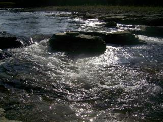 обои Чистая горная река фото