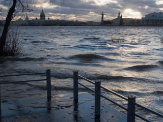 обои Вид на вечернюю Неву с мостика фото