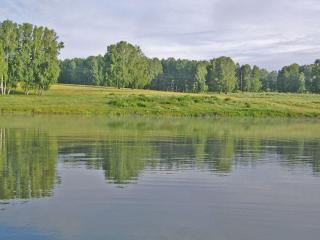 обои Зеркальная поверхность реки летом фото