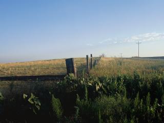 обои Деревянная ограда фото