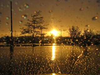 обои Восход солнца во время дождя в цвете сепии фото