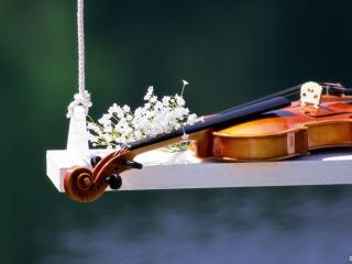 обои Скрипка на качелях фото