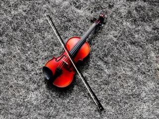 обои Яркая скрипка фото