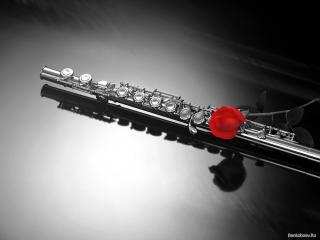 обои Флейта и роза фото