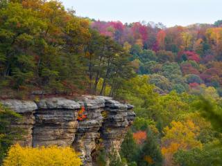 обои Красочная осень фото