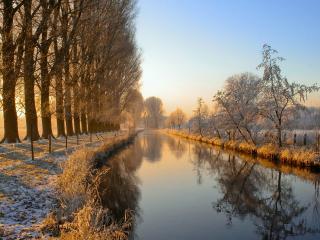 обои Две аллеи с деревьями по середине речка фото