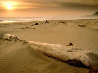 обои Пустынный закат фото