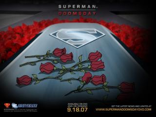 обои Superman: Doomsday фото