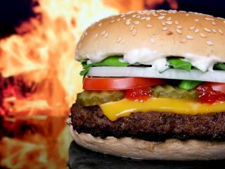 обои Американский супер-гамбургер фото