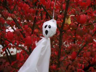 обои Приведение на хеллоуин фото
