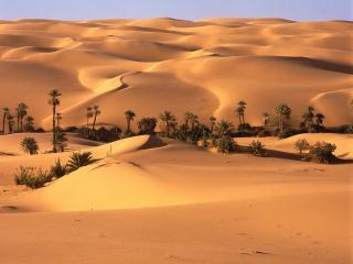 обои Оазис пустыни,   Ливия фото