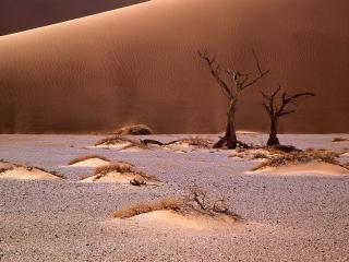 обои Песочный ландшафт,   пустыня Намиб,   Африка фото