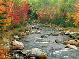 обои Осенние Цвета,   Уайт-Маунтинс,   Нью-Хэмпшир фото