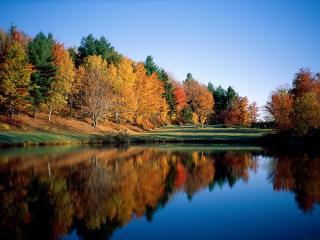 обои Осенние Размышления,   Вермонт фото
