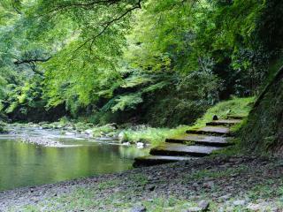обои Лестница к речке фото