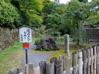 обои Забор в японской деревне фото