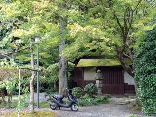 обои Деревня в Японии фото