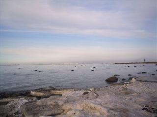 обои Берег Финского залива фото