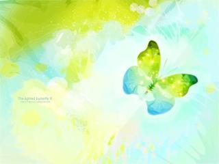 обои Лазурные бабочки фото
