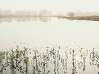 обои Молочное озеро фото