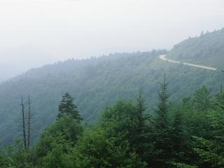 обои Дальняя дорога фото