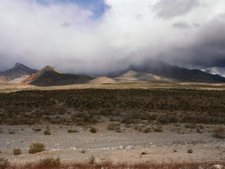обои Пустынный туман фото
