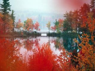 обои Осень на пруду, в Японии фото