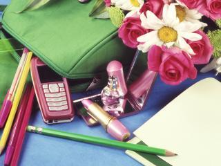 обои школьные пренодлежности с цветами фото